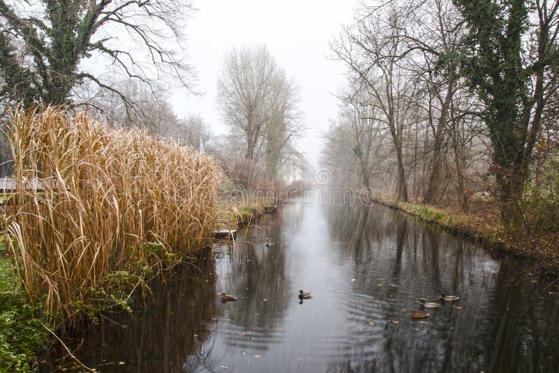 Lantligt landskap för sen höst i dåligt väder arkivbilder