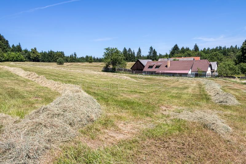 Lantligt landskap för sommar med ängen, byn och blå himmel royaltyfri foto