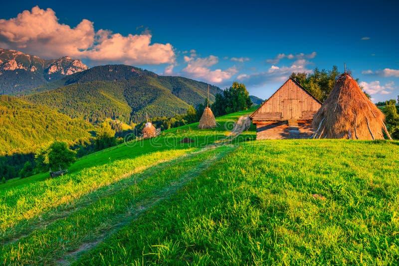Lantligt landskap för sommar med höbaler, Brasov region, Transylvania, Rumänien fotografering för bildbyråer