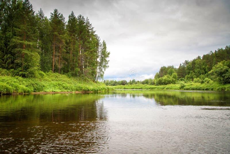 Lantligt landskap för sommar på floden på en molnig dag royaltyfria foton