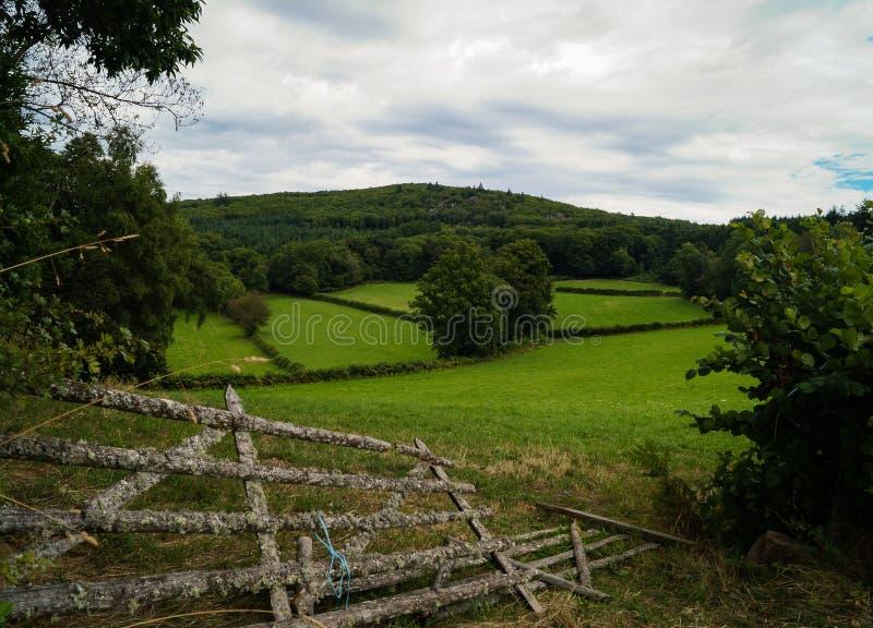 Lantligt landskap i Bourgogne arkivfoton