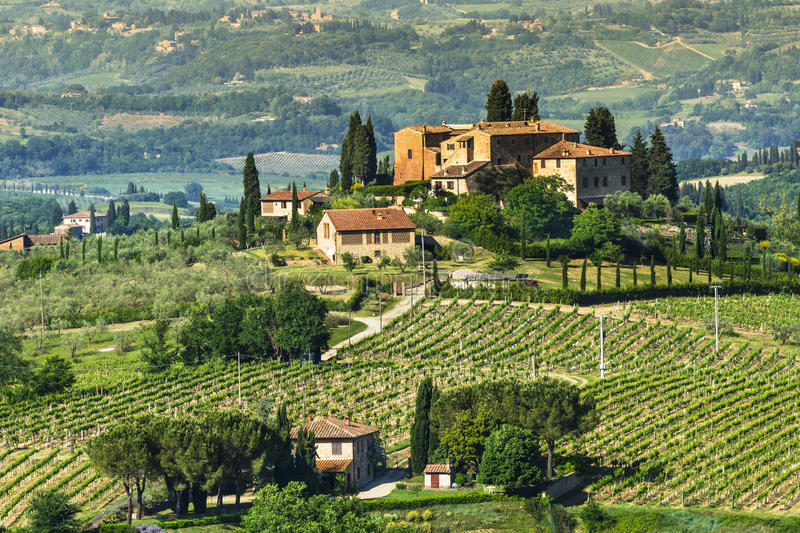 Lantliga Tuscany landskap royaltyfria bilder