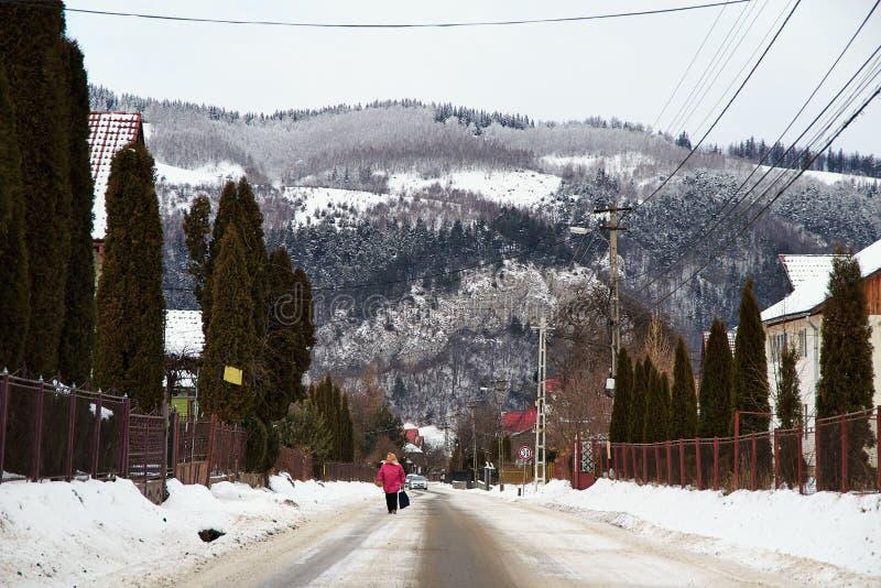 Lantligt landskap i vintern, Rumänien arkivbild