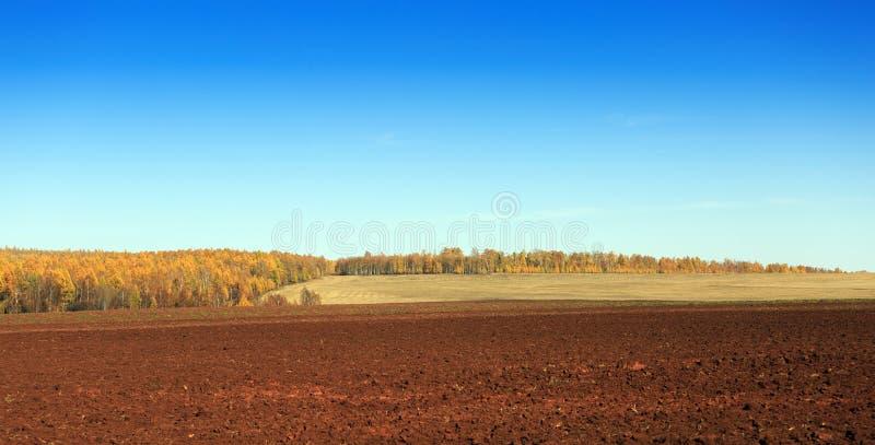 Lantligt landskap med ett plogat fält royaltyfri bild