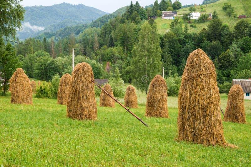 Lantligt landskap med höstackar i den Carpathian byn royaltyfri bild