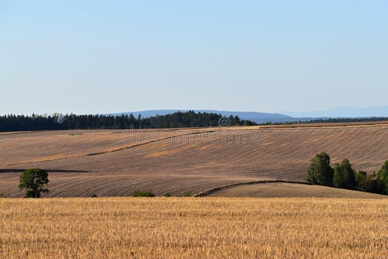 Lantligt landskap med jordbruks- fält Fältet skördas Landskap på solnedgången Bergig terräng royaltyfria bilder