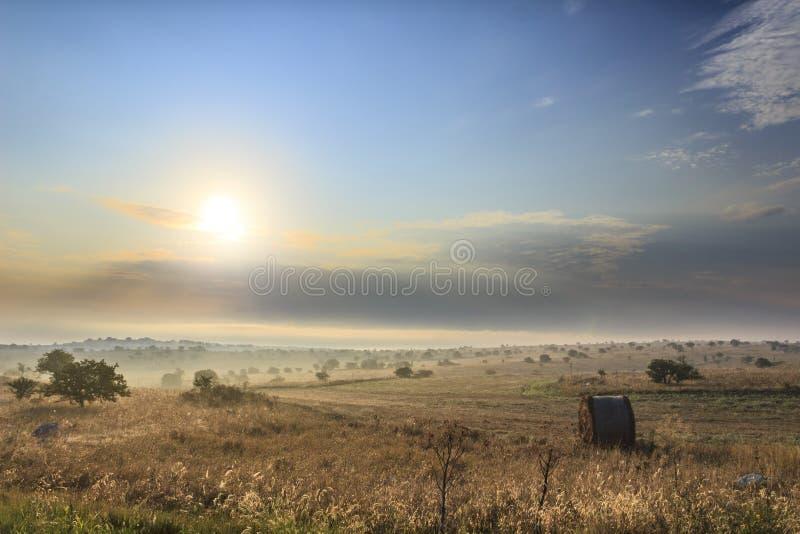 Lantligt landskap på gryning med balen av hö Italien Apulia fotografering för bildbyråer