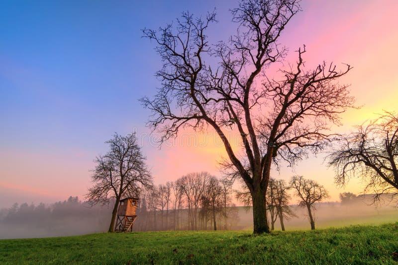 Lantligt landskap på solnedgången, med härliga olika färger i himlen arkivbild