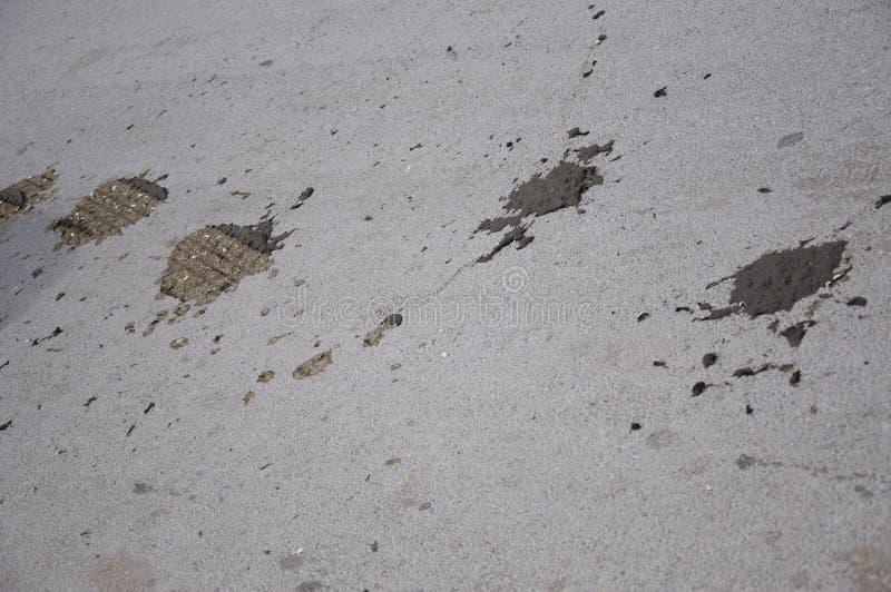 lantligt område Gummihjulet markerar över koakter pÃ¥ asfaltvägen GummihjulspÃ¥r och djur avföring pÃ¥ den lantliga vägen Gum arkivfoton