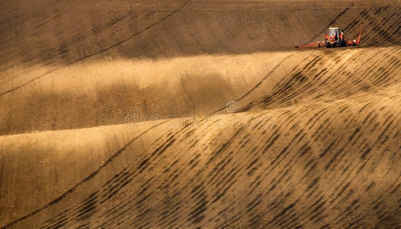 Lantligt sceniskt landskap Modern röd traktor som plogar och besprutar på fält Liten traktor som arbetar på ett färgrikt vårfält arkivbilder