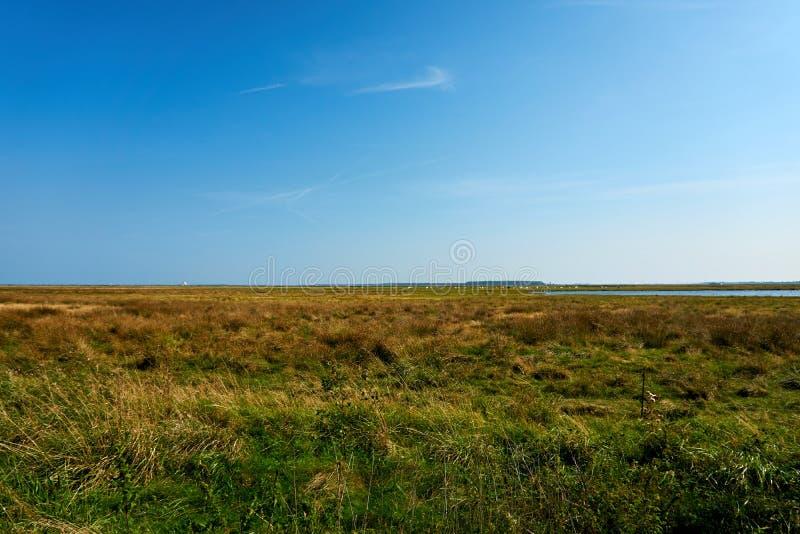 lantligt vasshus på ön av Hiddensee royaltyfri bild