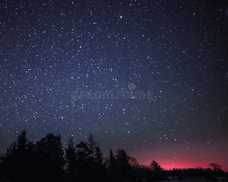 Lantligt vinterlandskap på natten med träd och stjärnor arkivbilder