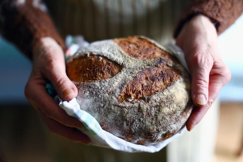 Lantligt wholegrain sourdoughbröd, nya händer som rymmer, släntrar arkivfoto