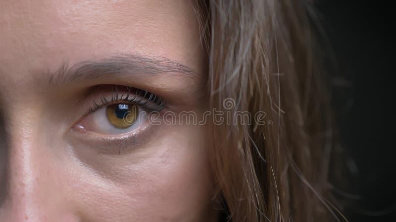 Lanzamiento de la mitad-cara del primer de la cara femenina de la morenita caucásica bonita joven con el ojo marrón que mira dere imagen de archivo
