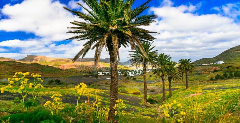 Lanzarote - belleza impresionante de la isla volcánica fotos de archivo