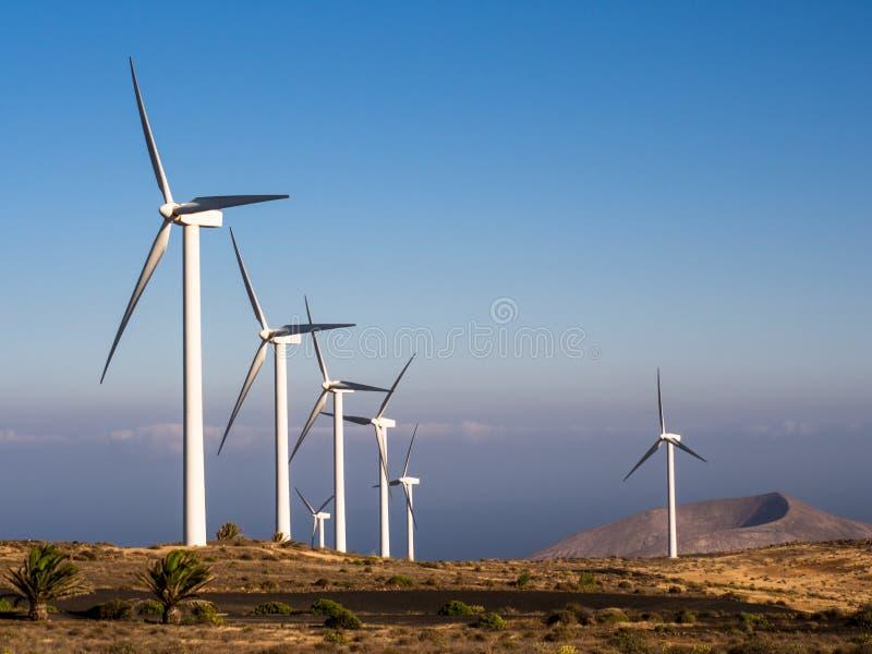 Lanzarote de Turbines van het Windlandbouwbedrijf stock foto's