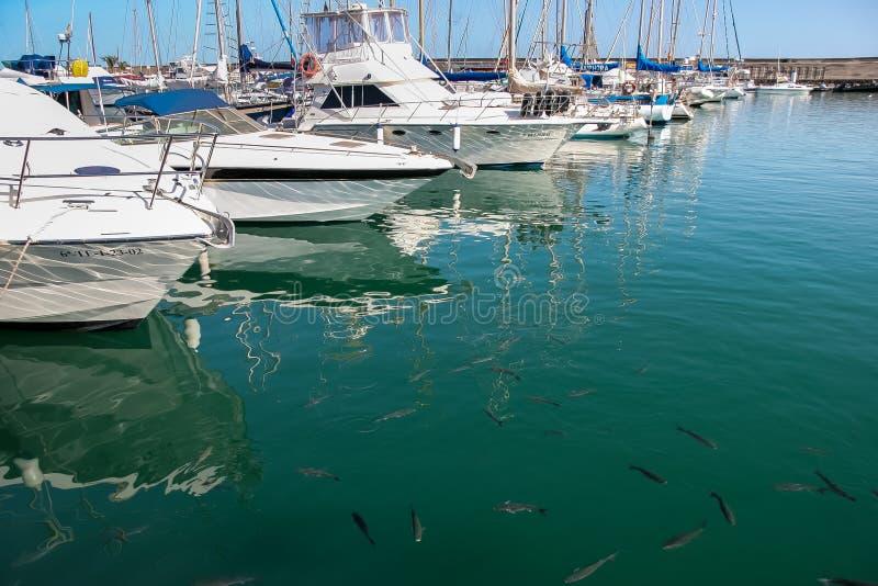 LANZAROTE, KANARIE ISLANDS/SPAIN - 10 AUGUSTUS: Een jachthaven in Lanzar stock afbeelding