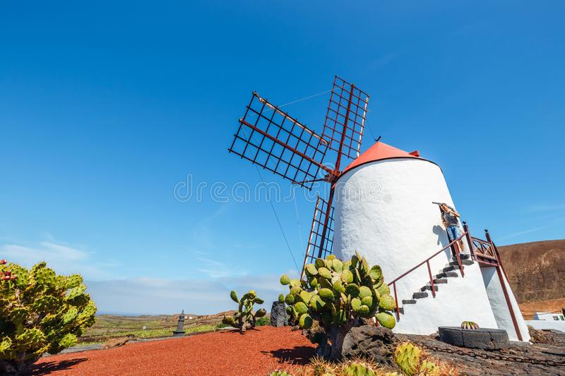 View of cactus garden with white windmill in Guatiza, popular attraction in Lanzarote, Canary islands stock images