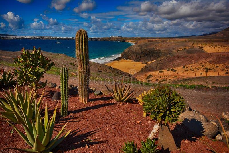 Lanzarote, Papagayo royalty-vrije stock afbeelding