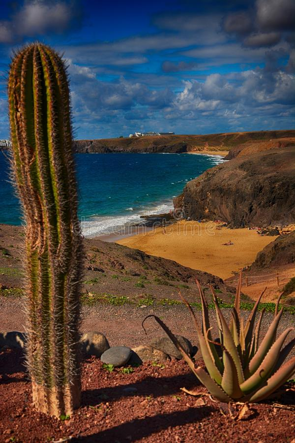Lanzarote, Papagayo στοκ φωτογραφία με δικαίωμα ελεύθερης χρήσης