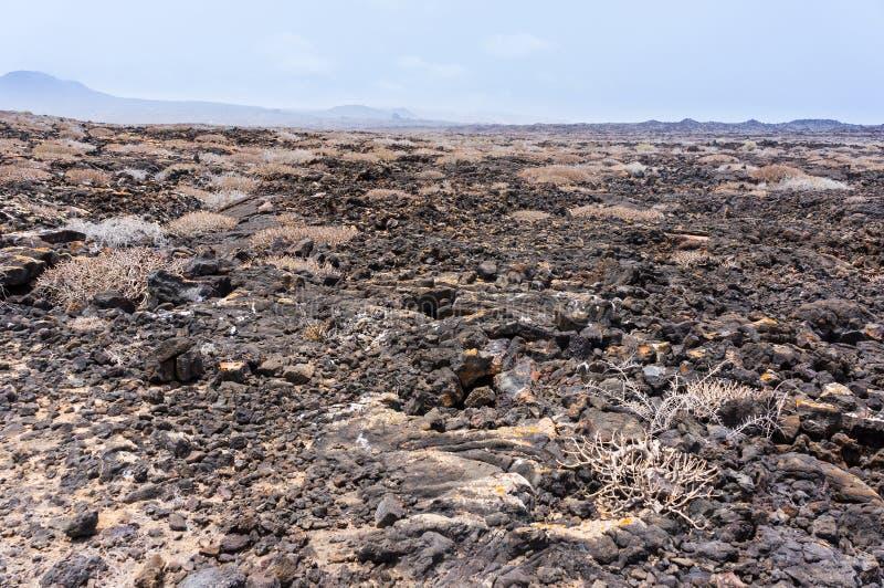 Download Lanzarote Timanfaya火山火山的熔岩 库存图片. 图片 包括有 晴朗, 贫瘠, 火山口, 海岛 - 62531803