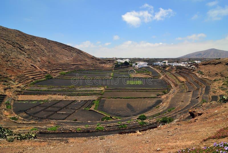 Lanzarote wieś wyspa kanaryjska Tenerife Hiszpania obrazy royalty free