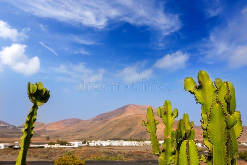 Lanzarote Yaiza avec le cactus et les montagnes images stock