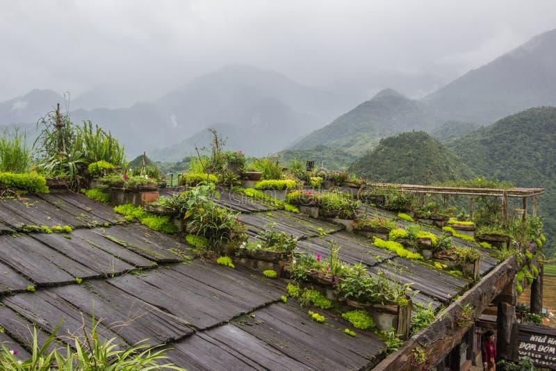 Lao Cai,nordvästra Vietnam,Jul14,2019:Små växter som växer över Pomu-trätak från det traditionella huset i stammen H'Mong vid C arkivbilder