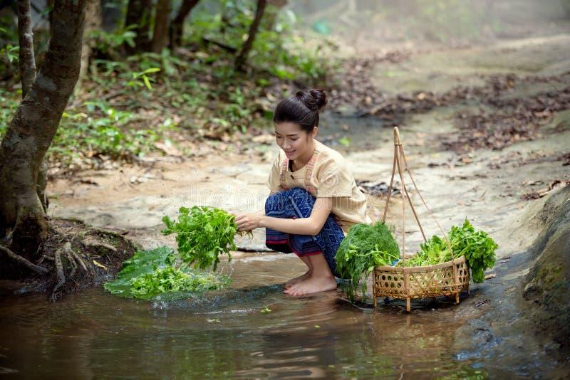 Lao kobieta Vientiane, Laos, czyści brzeg rzeki obrazy stock