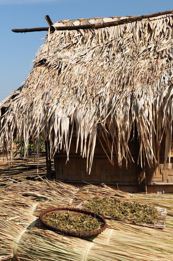 Lao, Muang Sing - rural scene stock photo