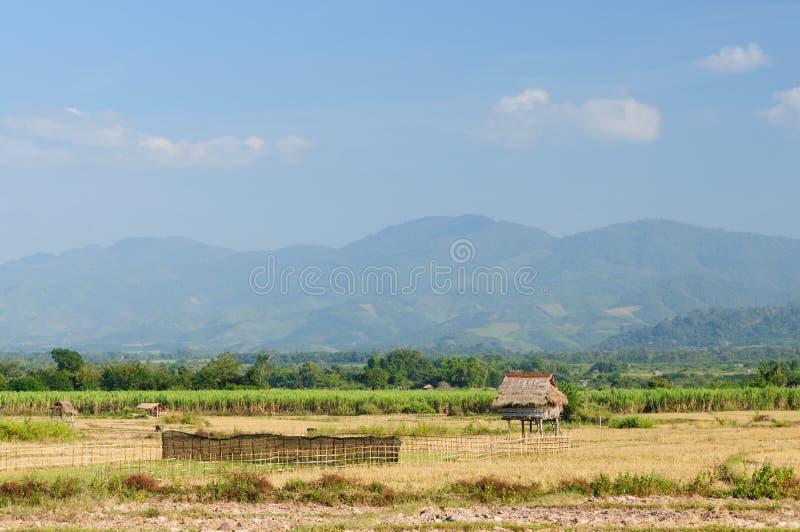 Lao, Muang zingt - landelijke scène royalty-vrije stock fotografie