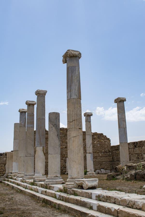 Laodicea no Lycus, Denizli, Turquia, ruínas, ágora, cidade antiga, império romano, clássico, museu do ar livre, colunata, colunas fotografia de stock royalty free