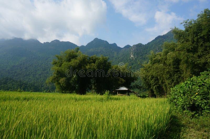 laos fotos de archivo libres de regalías