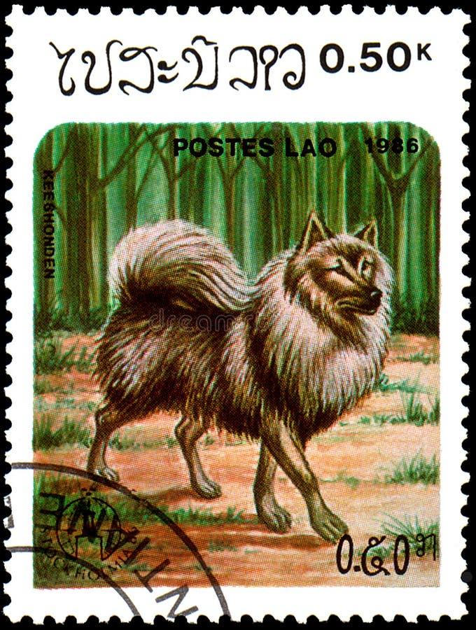 LAOS - CIRCA 1986: die Briefmarke, gedruckt in Laos, zeigt Keeshon stockfotografie