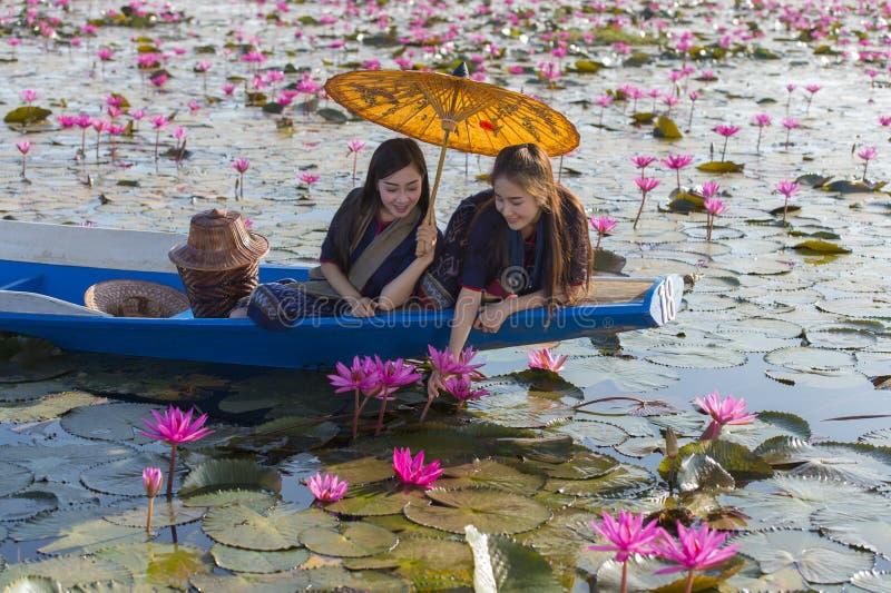 Laos-Frauen im Blumenlotossee, Frau, die traditionelle thailändische Leute, rote Lotus Sea UdonThani Thailand trägt lizenzfreie stockfotos