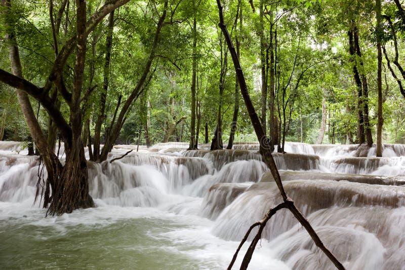Tad Sae Waterfall. Laos. Luang Prabang. Tad Sae Waterfall royalty free stock photos