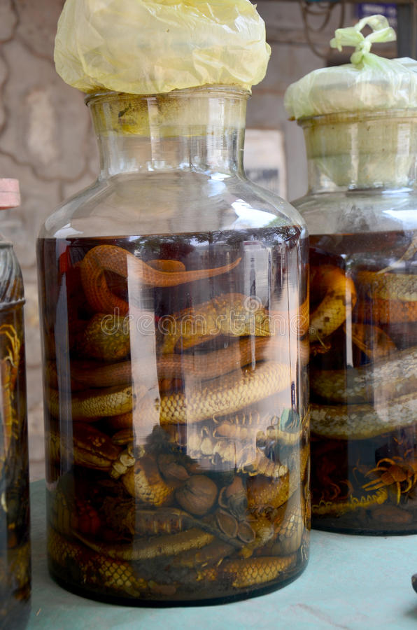 Laotian people made traditional liquor fermented and pickled wit. H poisonous animals and poisonous insect with herbal and other for drink liquor herbal medicine royalty free stock photo