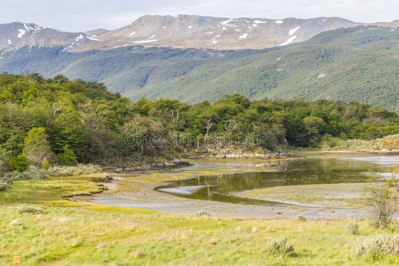 Lapataia fjärd, Tierra del Fuego National Park royaltyfria bilder
