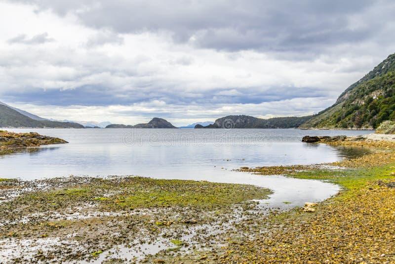 Lapataia zatoka, Tierra Del Fuego park narodowy zdjęcie stock