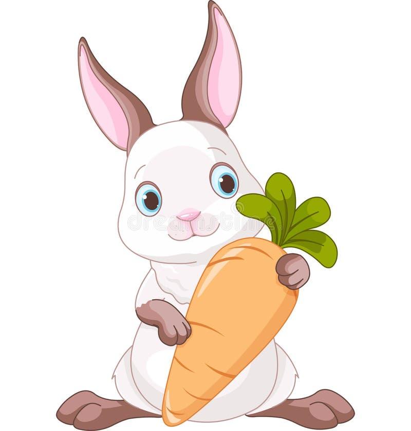 Lapin avec la carotte illustration libre de droits