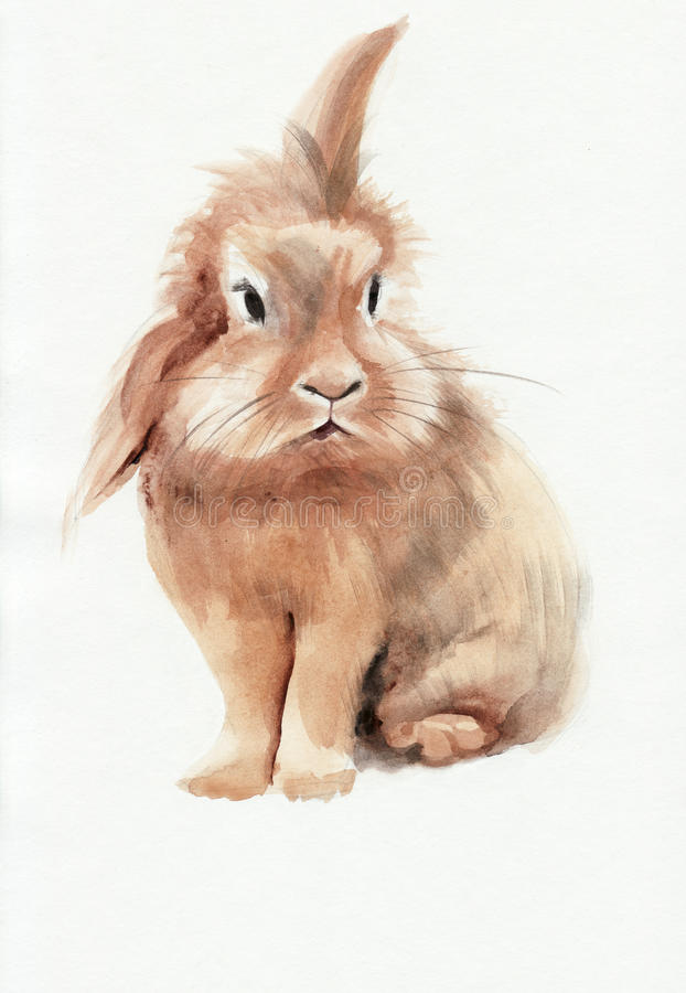 lapin brun illustration stock