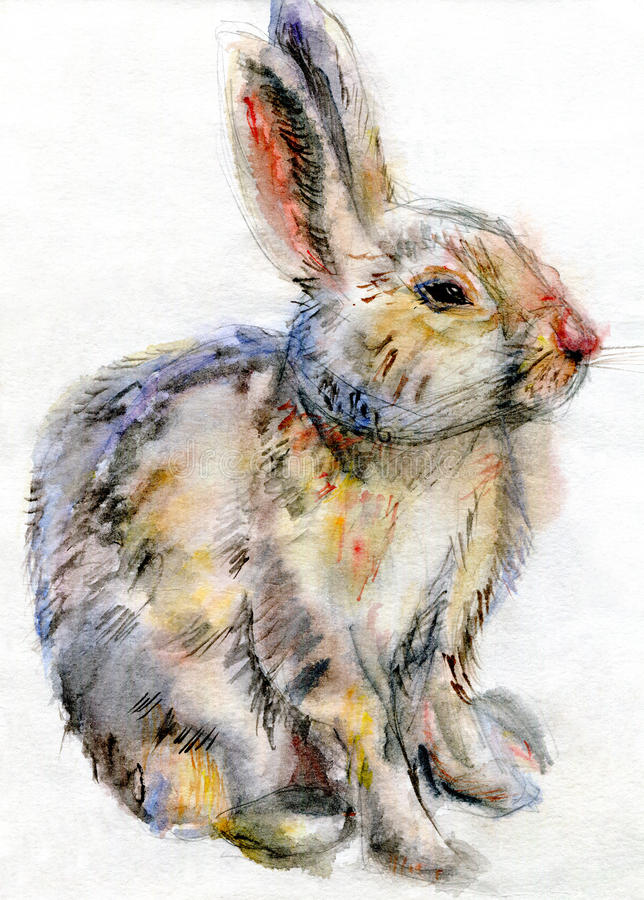 Lapin d'aquarelle illustration stock