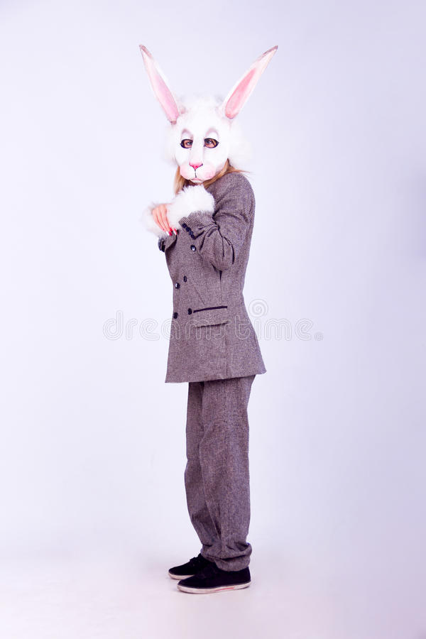 Lapin d'an neuf photo stock