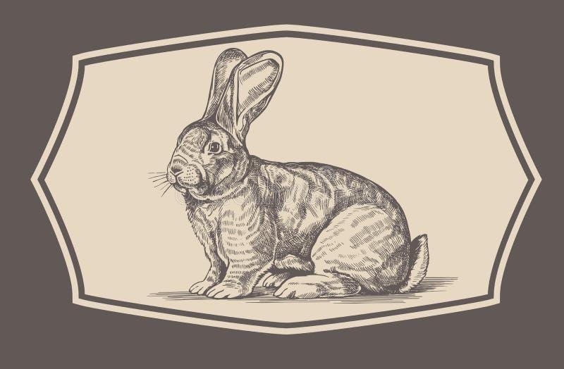 Lapin dans le style de gravure illustration stock