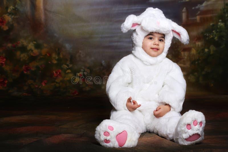 Lapin de Pâques photos libres de droits