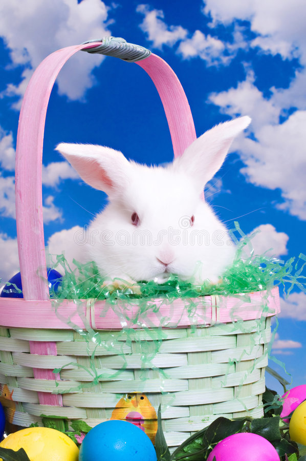 Lapin de Pâques prêt pour le grand jour images stock