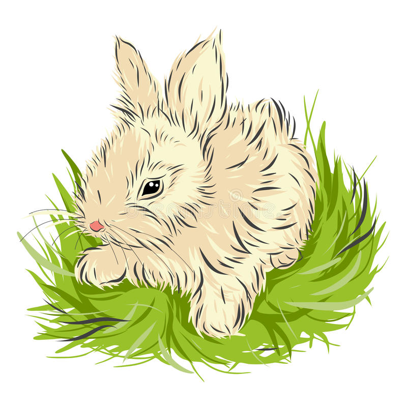 Lapin de Pâques se reposant dans l'herbe verte dessus image stock