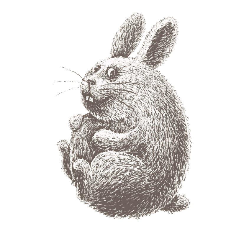 Lapin de Pâques tiré par la main de bande dessinée d'isolement sur le tableau blanc illustration stock