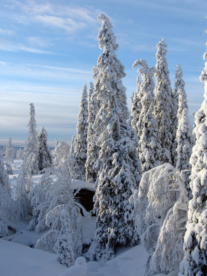 Lapland στοκ φωτογραφία με δικαίωμα ελεύθερης χρήσης