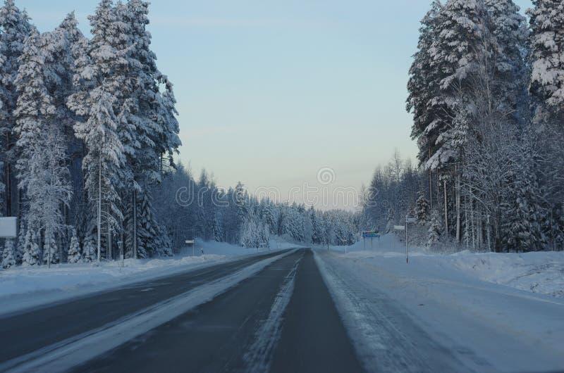 Lapland finlandês fotografia de stock